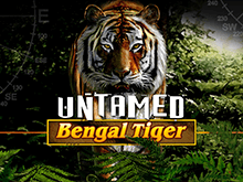 Untamed Bengal Tiger от Microgaming — играть с бонусами сайта
