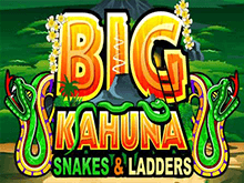 Big Kahuna Snakes And Ladders: онлайн-игра от компании Microgaming